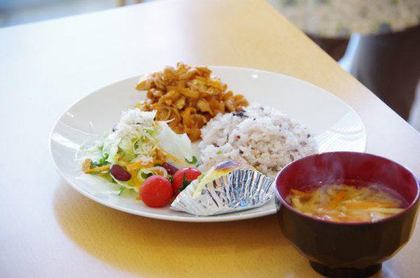 料理の盛り付け後の写真。ダイエット料理とはいえ、ボリュームたっぷりで見た目もキレイです。