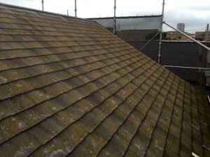 再塗装前の屋根。苔が生えている。