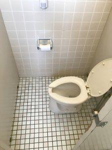 リフォーム前のトイレ。洋式。綺麗に使用されているが、ウォッシュレット等の機能はついていない