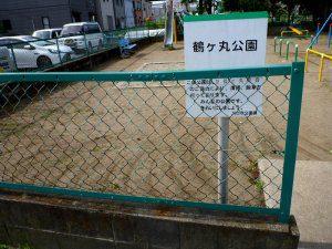緑色にフェンスを塗装した後
