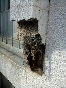 同様に、腐食によってコンクリートが完全に剥落してしまっている
